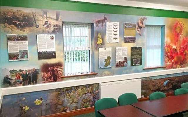 Printed Wall Graphics with Raised Panels